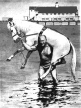 Александр Засс с лошадью