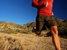 http://www.everlive.ru/running-exercises-for-endurance/